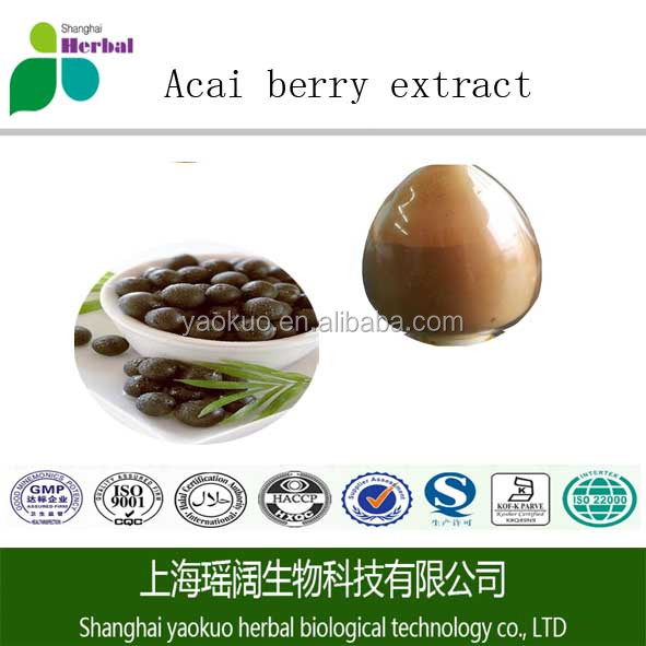 Organic high quality 98% Acai berry