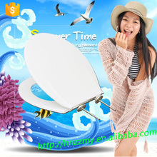 Transparent anglo indian luminous hydraulic polyresin bemis toilet seat with scale malaysia