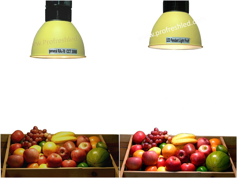 seafood pendant lamp 30W supermarket hanging light with COB chip