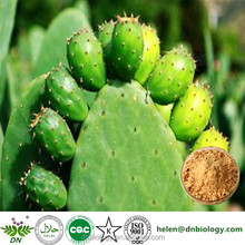 Xi'an dn biology supply Prickly Pear Juice Seed Extract/Cactus Extract Powder