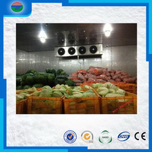 The Most Popular latest cold storage/cold room to keep onion