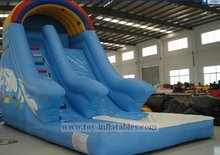 Top grade professional inflatable dolphin water slide
