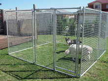 Sturdy and durable 6ft Dog kennel cage with best price