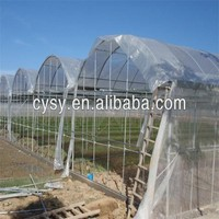 high quality with uv treated HDPE transparent white woven green house plastic film