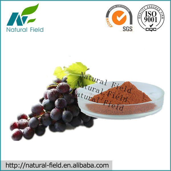 organic grape seed extract powder our best-selling product