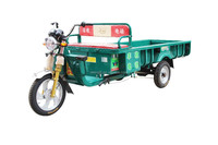 Fengshou Cheap cng auto rickshaw electric mobility scooter adult electric 3 wheel cargo tricycle/three wheel electric motor bike