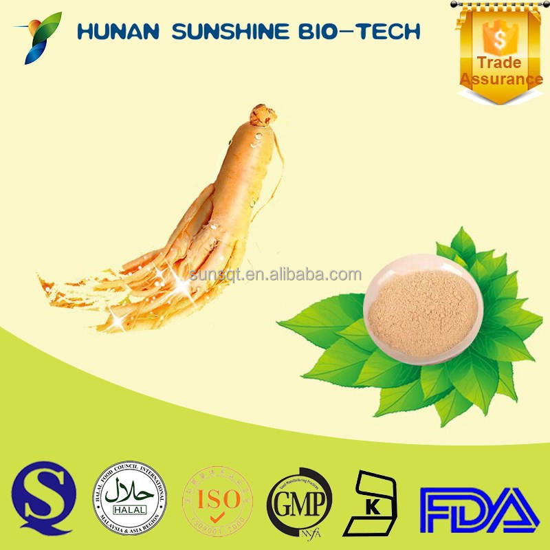 10% Total Ginsenosides HPLC Panax Ginseng Extract Ginseng Prices