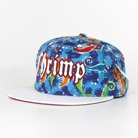 snapback hat cap with embroidery,snapback hat cap for sale,snapback hat cap