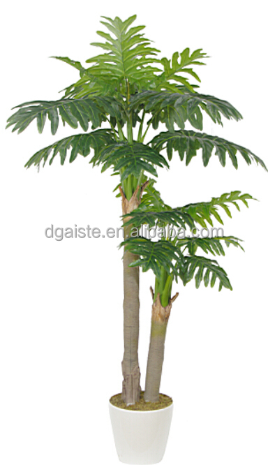 EY8006-22-2PS Chinese native plant make you feel exotic 2.2m traveller's tree
