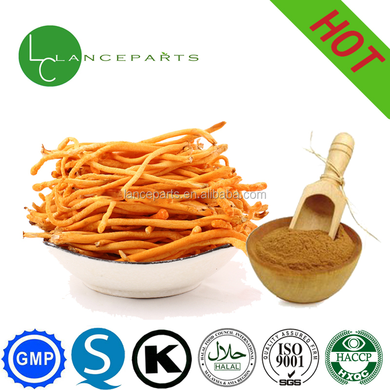 Man sex product in stock Cordyceps polysaccharide