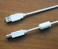 High quality AM-BM 2.0 USB data cable for printer AWM 2725 VW-1