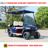 4 Seater Electric Wheel Painted Golf