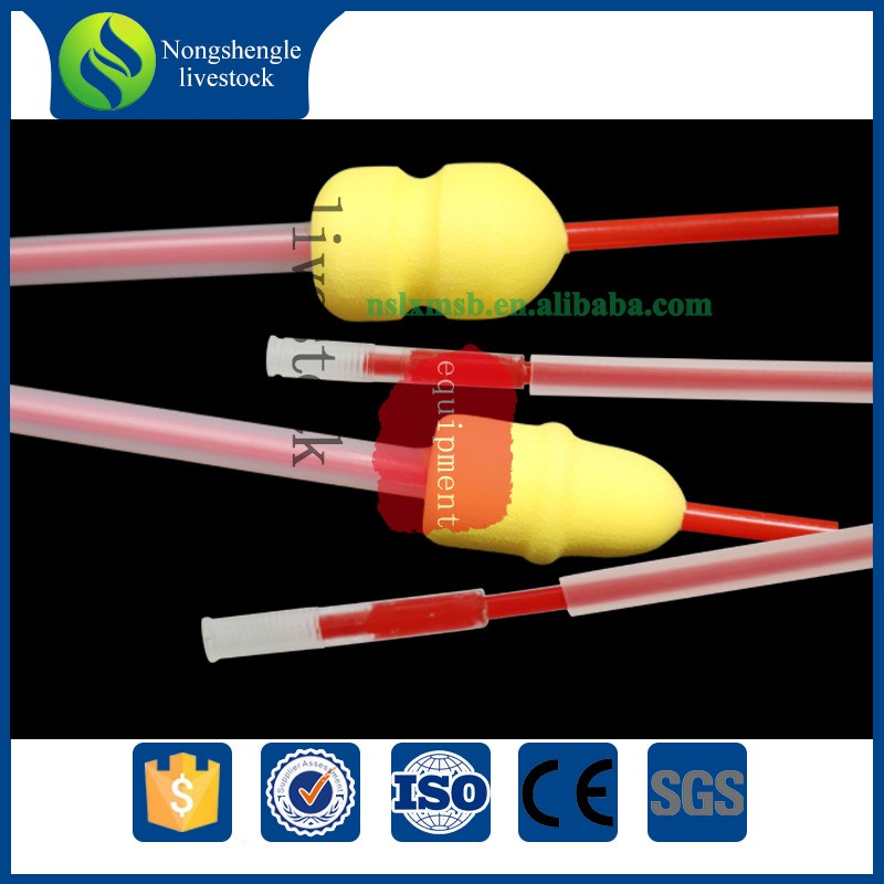 Disposable foam semen catheter for pig artificial insemination
