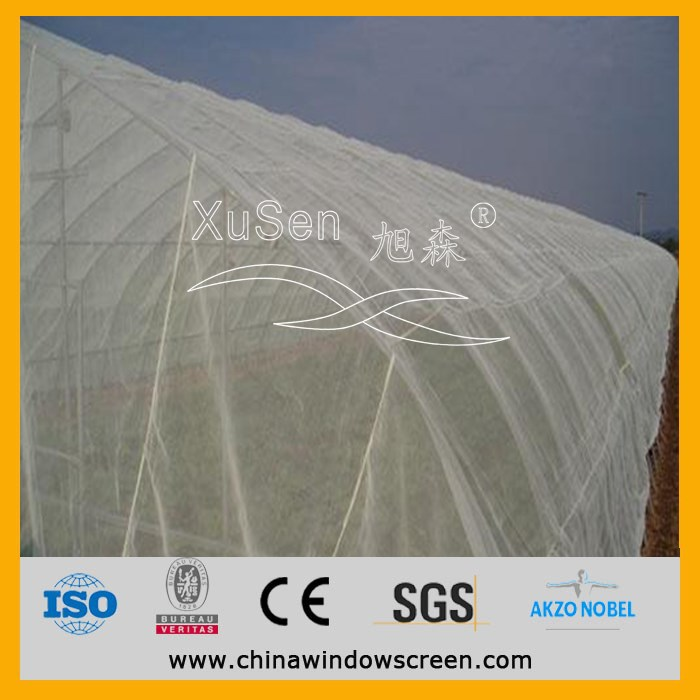 top quality Polythene fly net / Plastic insect proof net made in China
