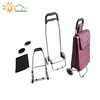 Fashion shopping trolley on wheels, shopping trolley bag for school