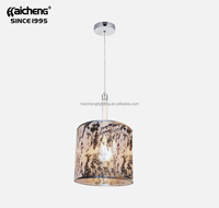 Restaurant Decorative Pendant Lighting With Silver