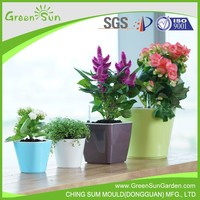 Cheap hydroponic plastic decorative mini colorful flower pot