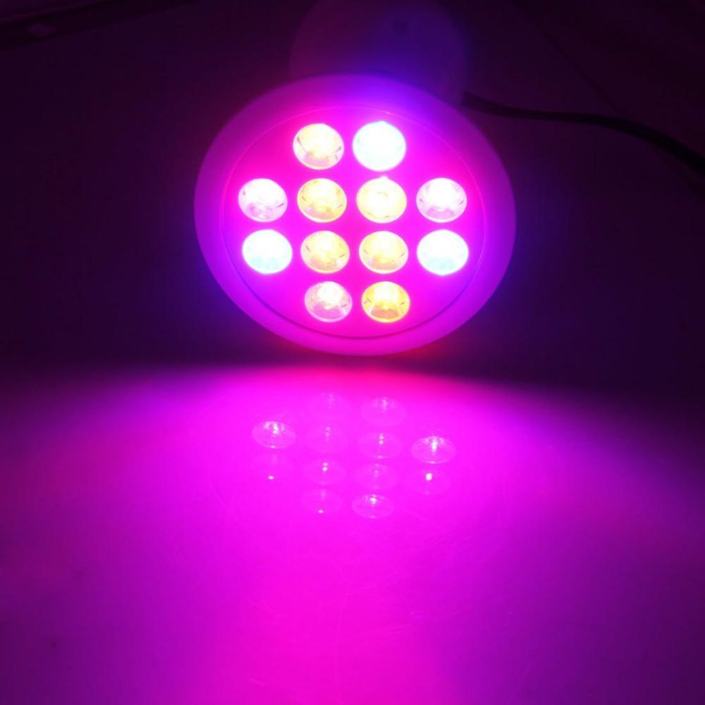 12w 24w Led Grow Light E27 Hydroponic Led Plant Grow Light For Greenhouse Buy Led Plant Grow