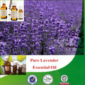 100% natural & pure lavender oil, lavender oil price with superior quality