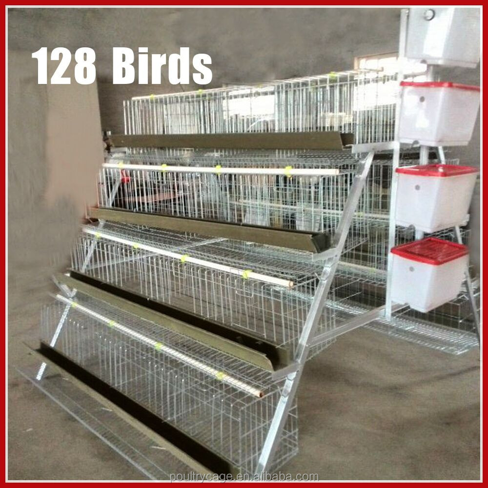 Professional Manufacturer Cheap Layer Chicken Cages /House Hot Sale In Kenya