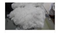HIgh Quality Polyester Fiber