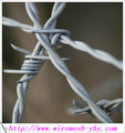 galvanised barbed wire (ISO&CE&BV Certification)