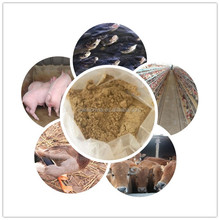 Factory Supply Feed Grade Mutton Powder