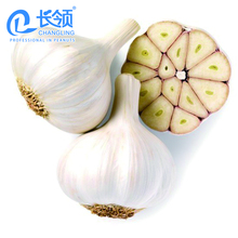 2018 new crop Chinese whoesale fresh garlic normal white garlic