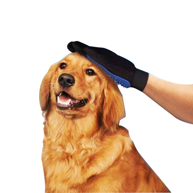pet grooming brush.jpg