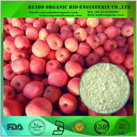 Organic apple extract / apple pectin