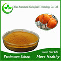 Super high quality persimmon leaf tea extract powder