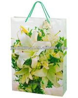 Hot sales costume paper bag for shopping and promotiom,good quality fast delivery