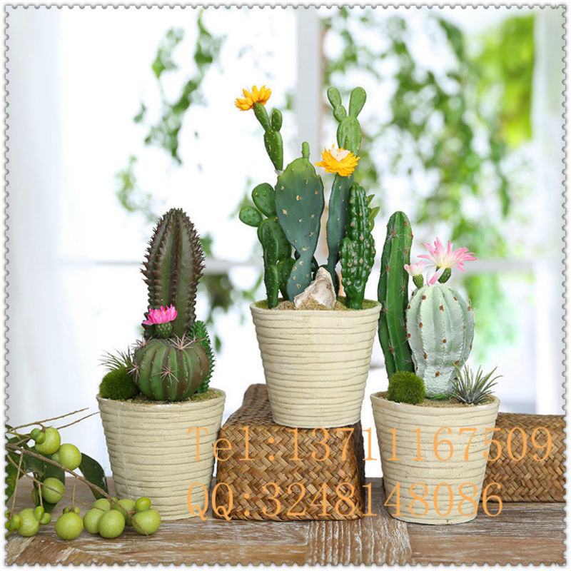 large artificial rhipslis fake cactus artificial tropical succulent plant for outdoor. Black Bedroom Furniture Sets. Home Design Ideas