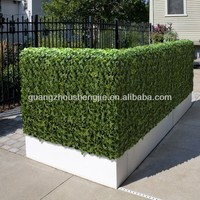 Sleek Realistic artificial plants hedge maple leaf hedge ficus leaf hedge with happy price