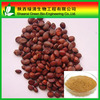 Anti-depression Semen Ziziphi Spinosae/Spine Date Seed Extract/Jujuba Extract Saponin 30% Jujuboside 2%, High Quality Spine Date