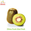 Fresh red kiwi supply from China