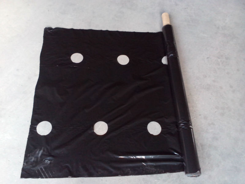 agriculture black plastic film plastic film for green house PE film for agricultural