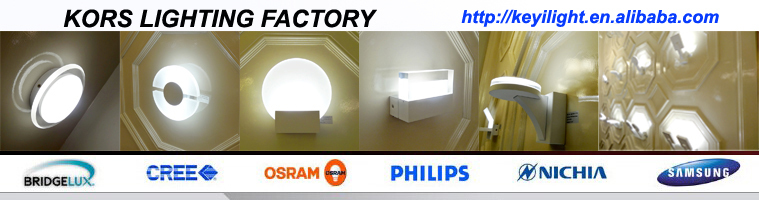 IP54 waterproof luminaires round oval Outdoor Lamp 18W LED SMD Ceiling Light