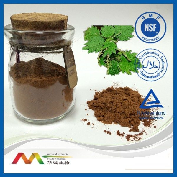 Natural food additive Nettle Extract Powder /Nettle Leaf /Nettle Root
