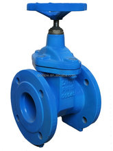 DN250 Standard Flanged Cast Iron Non-rising Stem Gate Valve