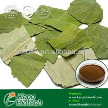 2%~98% Nuciferine Lotus Leaf Extract - 475-83-2 - Chinese Herbs