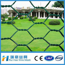 PVC coated decorative protective hexagonal wire mesh
