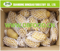 Factory supply New season High Quality Fresh Potato 100g-150g with carton