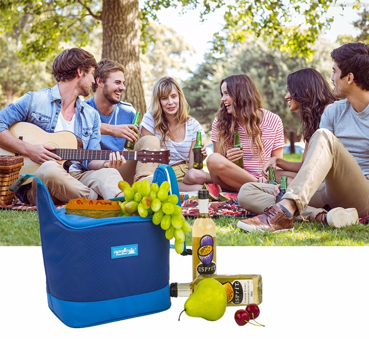 Frozn Lunch Cooler Bag with cooler commpartment