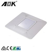UL CE Rohs certificate meanwell driver 120W gas station light ip67 super bright parking garage led canopy light