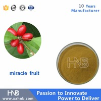Manufacture Supply Quality Miracle Berries Fruit