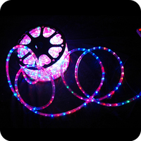 LED flexible color changing solar rope light string lights nativity