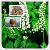 Natural Black cohosh extract say good bye to rheumatism