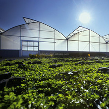 China manufacturer agriculture greenhouse for sale