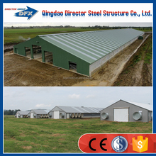 Steel Construction Manufacture Chicken Farm For Growing Broiler
